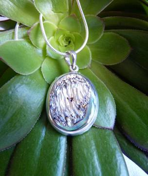 Oval paua shell pendant set in silver