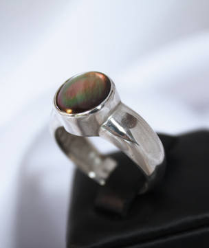 Sterling silver shell ring - NZ made jewellery